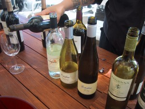Mendocino Wines